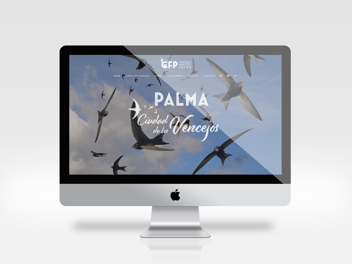 CFP Palma - Conservació Falzies Palma